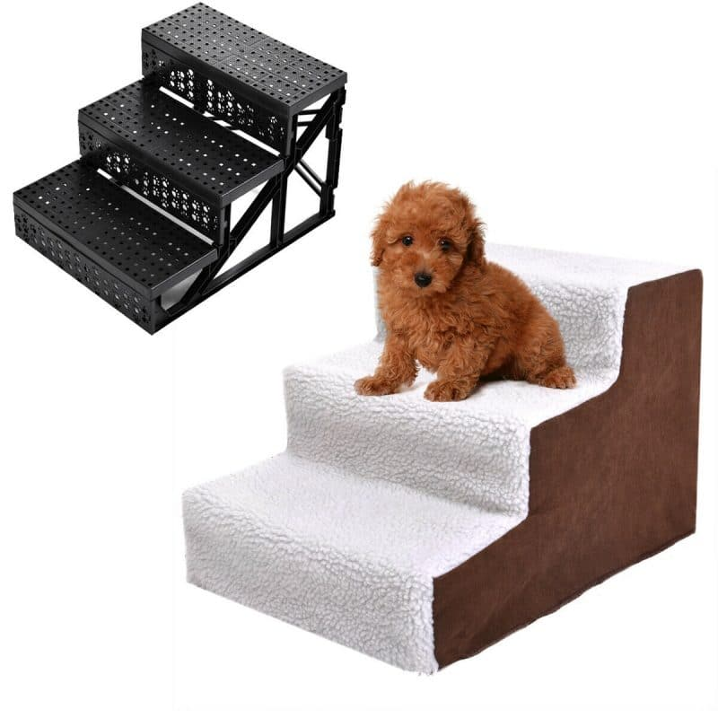 White-and-brown-dog-ramp